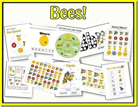 kindergarten activities bees 86 best images about bee unit on pinterest bumble bees