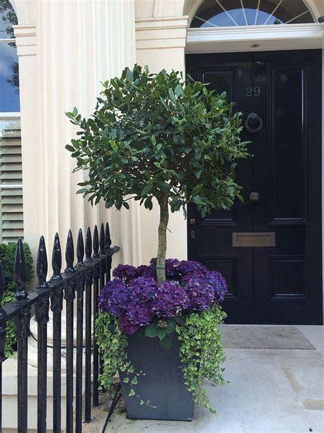 Purple Hydragea Front Door Flowers Front Doors Doors Flowers For Front Door