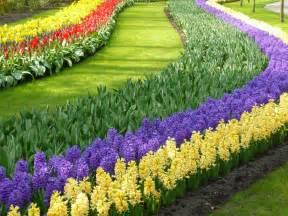 world gardens colorful keukenhof gardens holland world for travel