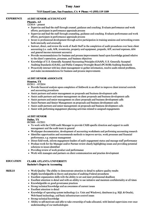 wonderful sle resume auditor position contemporary