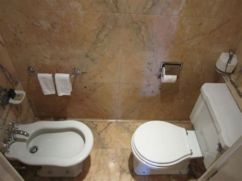combined toilet and bidet system toilet and bidet combination in modern bathroom