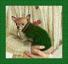 chihuahua sweater knitting pattern knitted sweater pattern for a chihuahua ebay