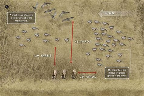 layout hunting decoy spreads five great spreads for geese
