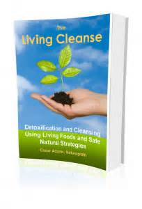 The Most Effective Detox And Cleansing Strategies by The Living Cleanse Detoxification And Cleansing Using