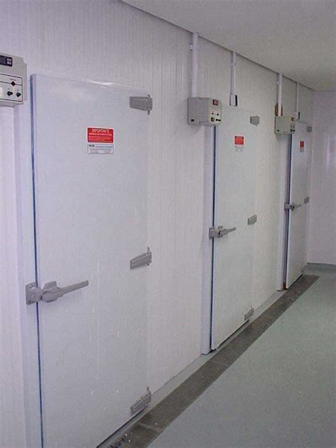 camaras frigorificas para flores c 226 mara fria para flores str