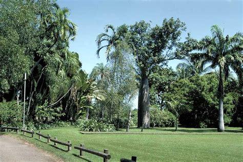 George Brown Darwin Botanic Gardens Darwin Botanic Gardens