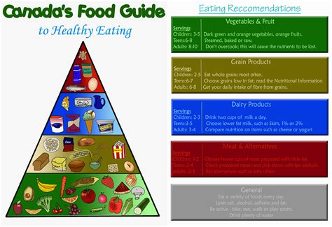 printable version canada s food guide canada s food guide by aleriacarventus on deviantart