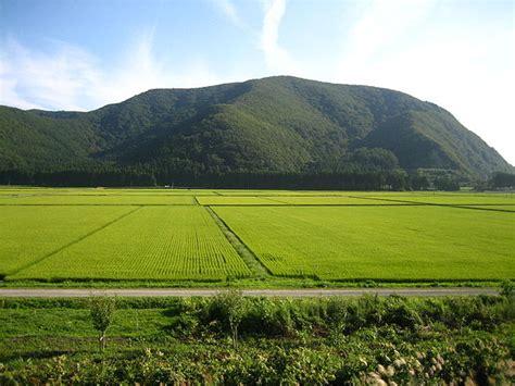 filerice paddies  aizu japanjpg wikimedia commons