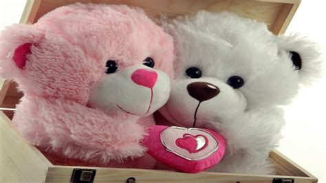 whatsapp wallpaper teddy teddy day images hd wallpapers happy teddy day 2018