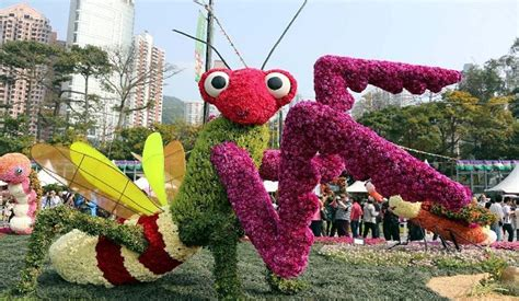 new year flower show hong kong flower show 2014 blossoms of