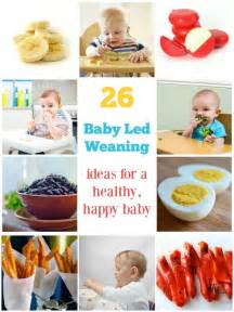 the baby led weaning quick and easy recipe book by gill rapley penguin books australia 26 baby led weaning foods for a healthy happy baby babycentre blog