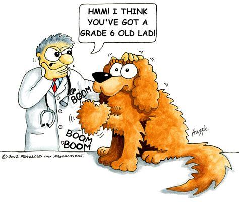 murmur in dogs mvd disease part 2 cavalier matters