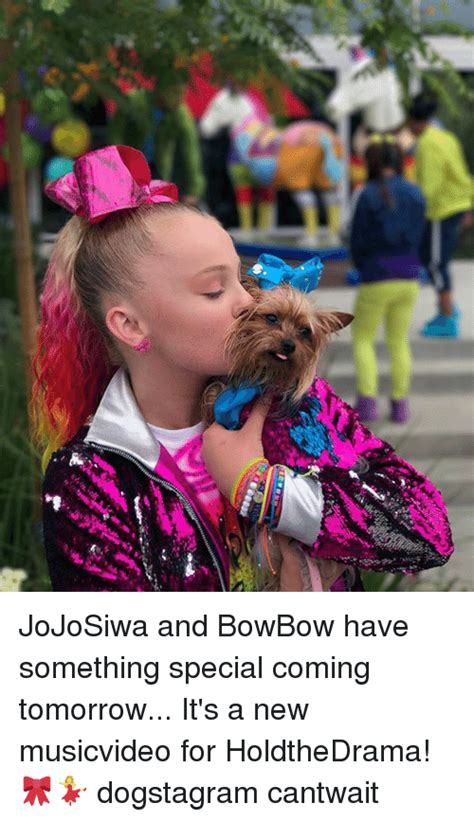 Rok Bowbow 25 best memes about musicvideo musicvideo memes