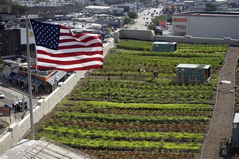Furniture Cleaning Nyc by Top 5 Urban Farms In New York City Brooklyn Grange Photo