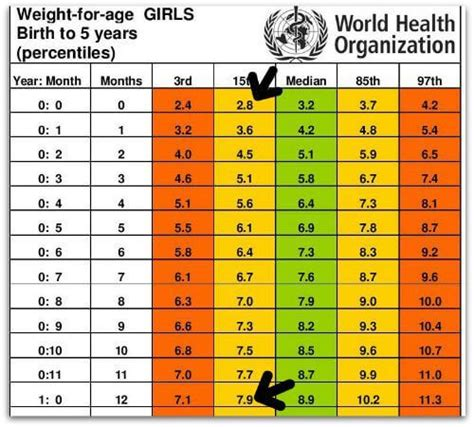the average weight and height for a 12 year old standard height and weight chart for babies every parent