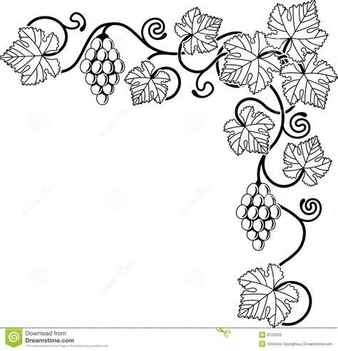 black and white vine pattern grape vine design element stock vector image of cluster