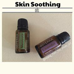 Doterra Armpit Detox by 1000 Images About Doterra Essential Oils On