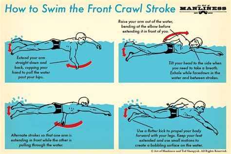 how to your to swim how to swim the front crawl your 60 second guide