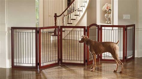 dog gates for house top 5 best dog gates and playpens for dogs top dog tips