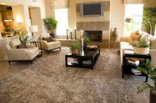Area Rug Ideas For Living Room Luxury Large Rugs For Living Room Ideas Carpets For Living Room Rugs For Living Room
