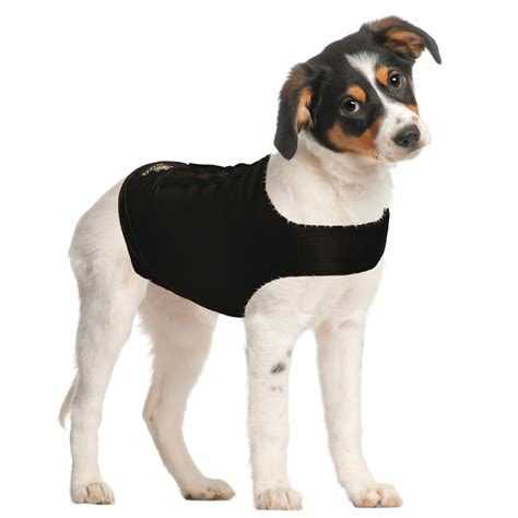 anxiety shirt for dogs 5 best anxiety shirt easy and efficient solution to calm and sooth away