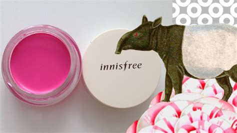 Innisfree Neon Color Pot 1 2 3 innisfree neon color pot reivew the wolf