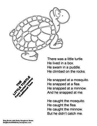 THE LITTLE TURTLE: a Singable Illustrated Poem | Sing