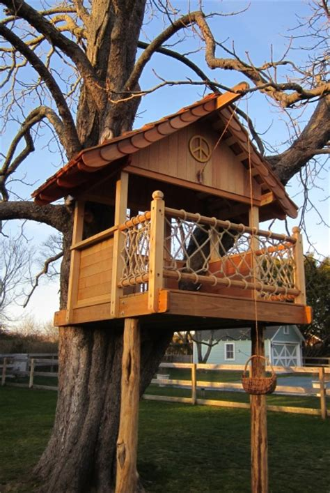 Backyard Treehouse For by Backyard Tree House Plans House Design Plans