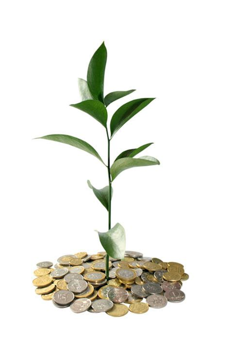 pictures  plants growing    pile  coins