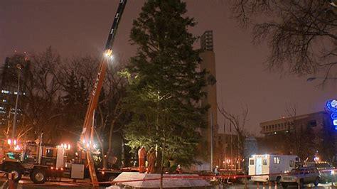 edmontin christmas tree lots tree arrives in downtown edmonton ctv edmonton news