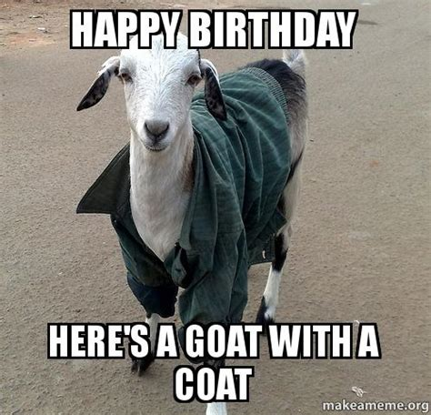 Happy Goat Meme - happy birthday here s a goat with a coat make a meme