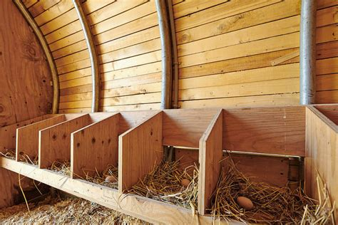 Backyard Chickens Nesting Boxes Chicken Coops Choosing The Right One Backyard Chicken Zone