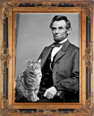 did abraham lincoln live in the white house 488 best images about white house residents on pinterest