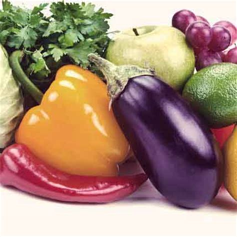 vegetables safe for dogs poisonous foods for dogs chocolate onions gum petcarerx