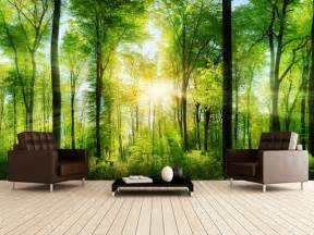 forest panoramic with sunbeams wall mural forest panoramic wall murals