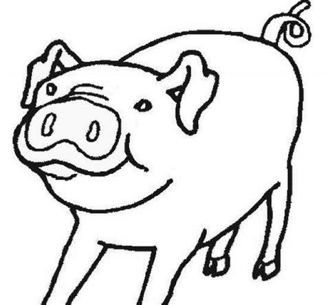 transmissionpress  coloring kids pig animal  print