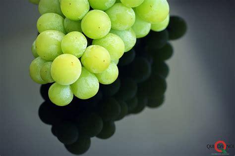 tipi di uva da tavola uve da tavola l italia e il primo produttore al mondo
