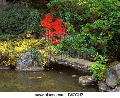 seattle wa kubota gardens vibrant autumn leaves of