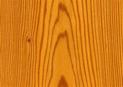 Holz Rinde Lackieren by Nutzung Der L 228 Rche Waldwissen Net