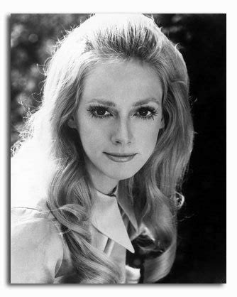 what is sondra locke s bra size ss2336945 movie picture of sondra locke buy celebrity