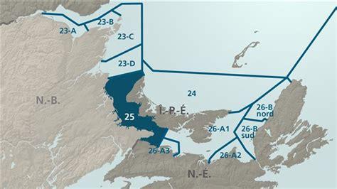 taille minimale chambre la taille minimale du homard sera augment 233 e dans la zone