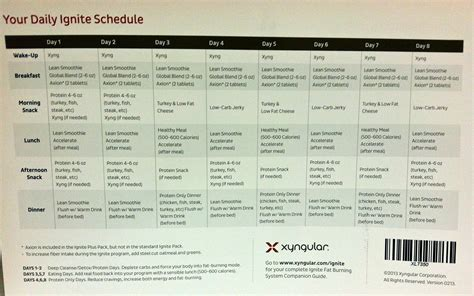 xyngular 8 day challenge preparation day following
