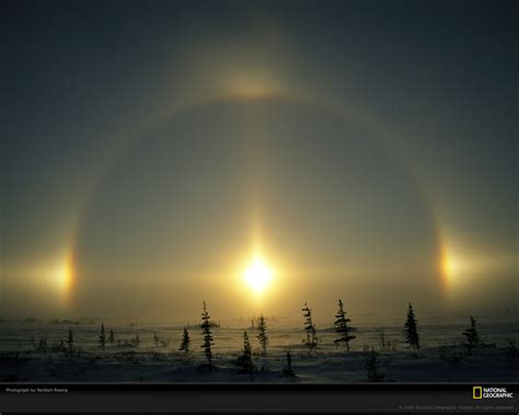sun dogs sun the daily omnivore