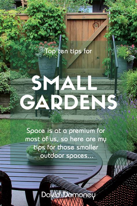 top  tips  small garden design  transform  space