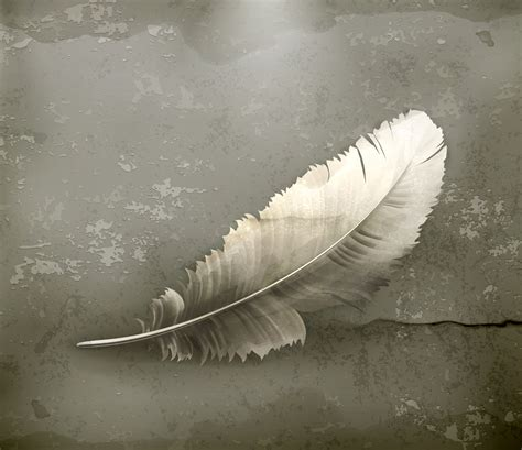 Light As A Feather by Free Image Light As A Feather Bigstock