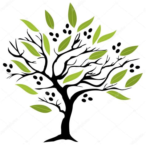 olive vector olive tree vector stock vector 169 lilac design 97695746
