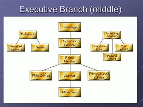 Executive Branch Cabinet Branches Of Government The Executive Branch Ppt