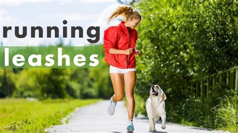best leash for running best leash for running 5 free picks