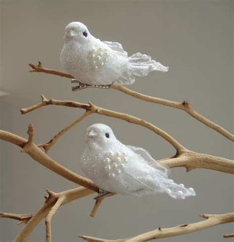 21 best 12 days of christmas 2 turtle doves images on