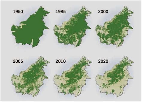 extent  deforestation  borneo